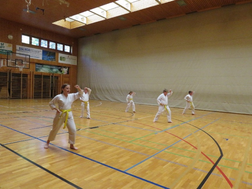 karate 46